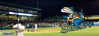 Sugar Land Skeeters use BatW8z™